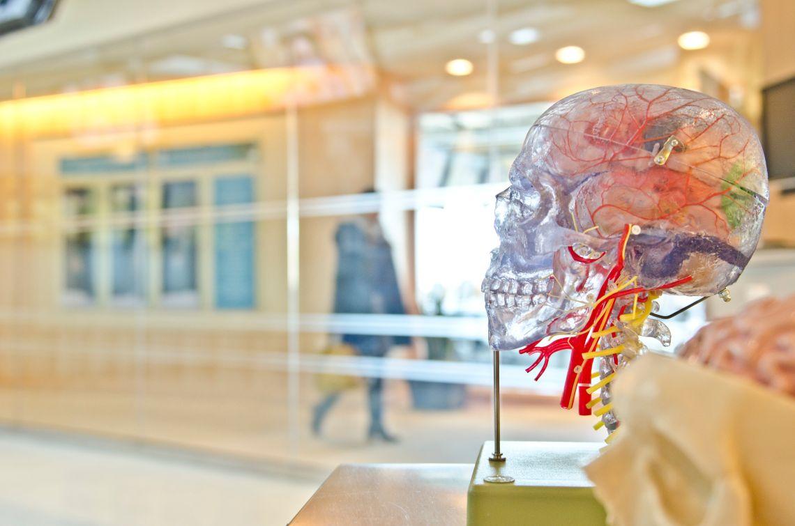 Sănătatea creierului stă în decizia ta!