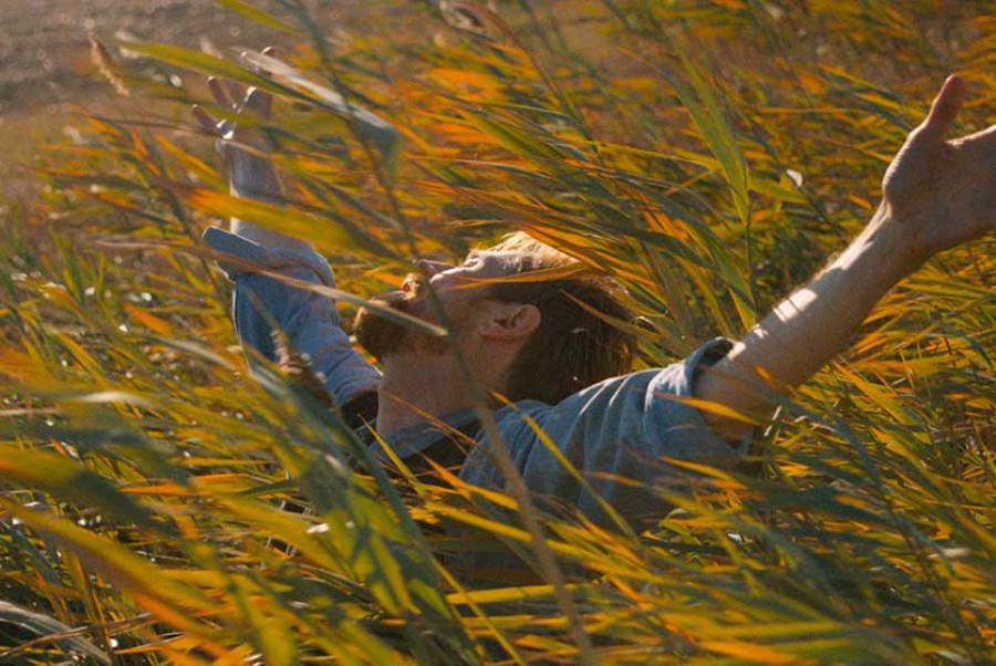 11 filme despre Van Gogh
