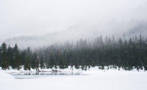 10 activități de familie pentru o vacanță de iarnă memorabilă